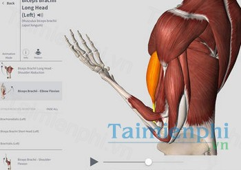 download complete anatomy cho iphone