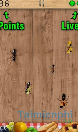 download ant smasher cho android